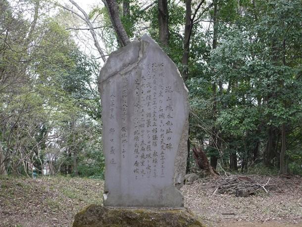 20110419003