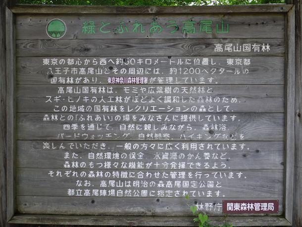 20100711005