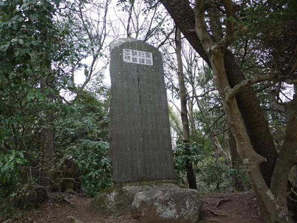 20110428009