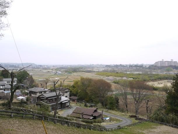 20110418009