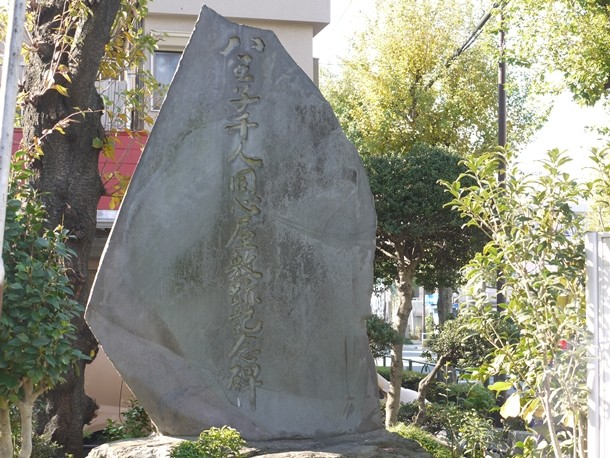20101120016