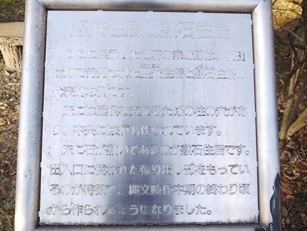 20101231011