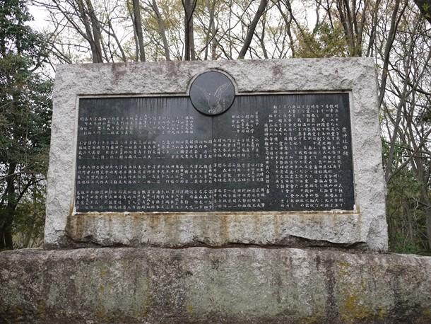 20110428003