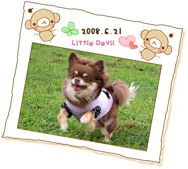 20080701-2