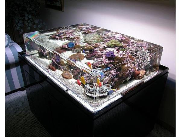 zero-edge-aquarium