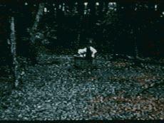 怖い心霊動画29