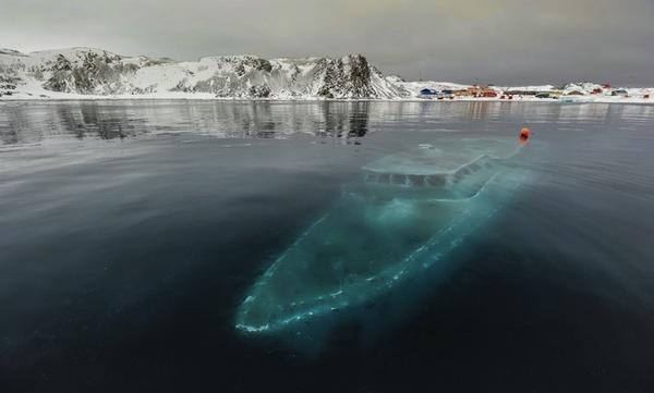 沈没船 南極大陸