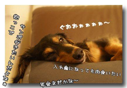 じいさんの夢.jpg