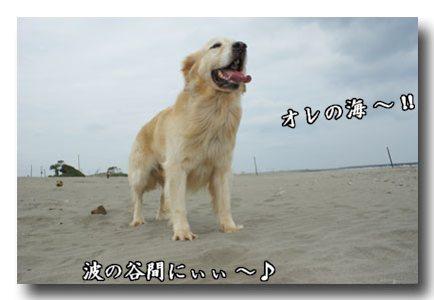 おれの海.jpg