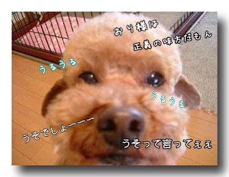 モジャ男の叫びのコピー.jpg