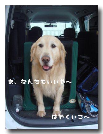 なんでもいいか.jpg
