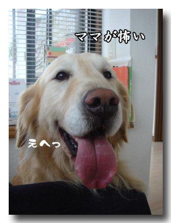 こわいもの.jpg