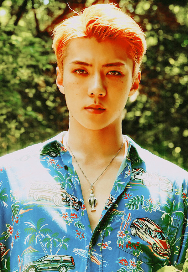 the war sehun5
