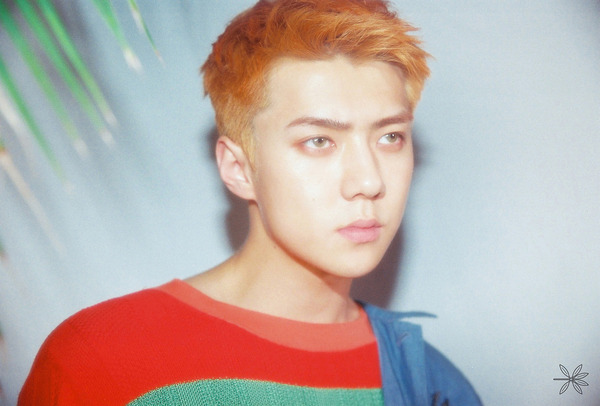the war sehun3