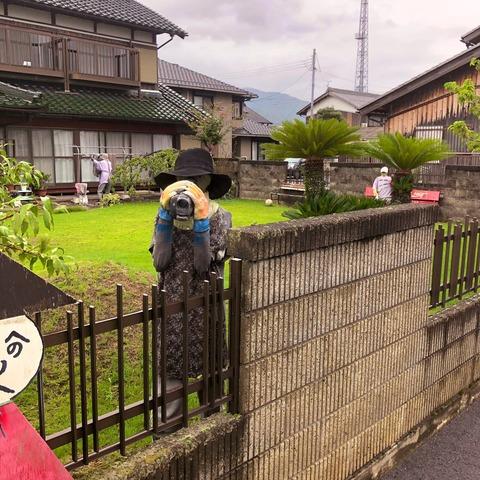 kakashimura3
