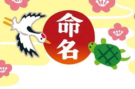 template_meimei1_tsurukame