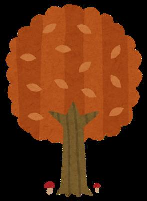 tree3_aki