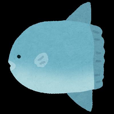 fish_mola2