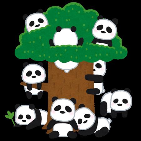 animal_panda_kichi