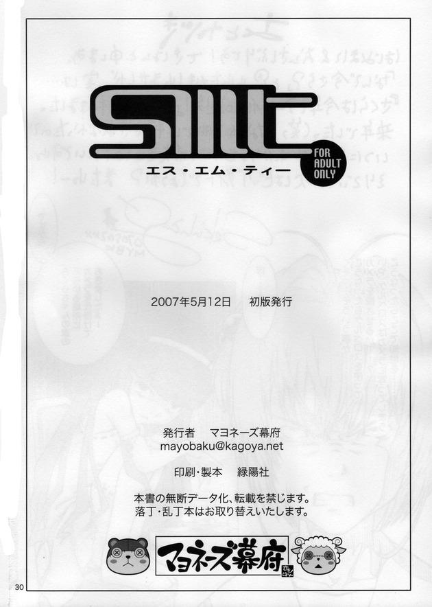 SMT_29
