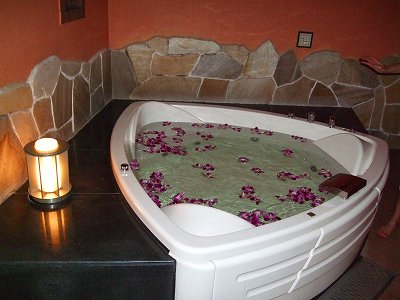 20090628-ph2flowerbath