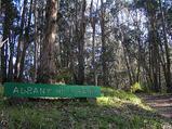 アルバニー公園サイン