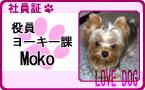 Mokoちゃん