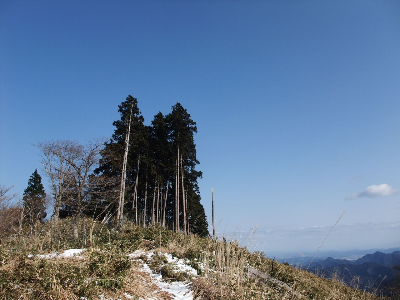 三辻山 縦走路  黒滝山頂