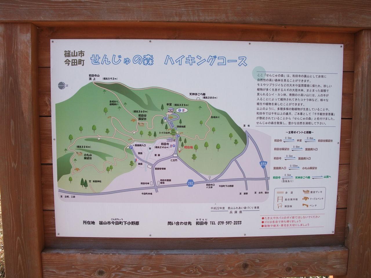 篠山市 今田町 和田寺山 せんじゅの森