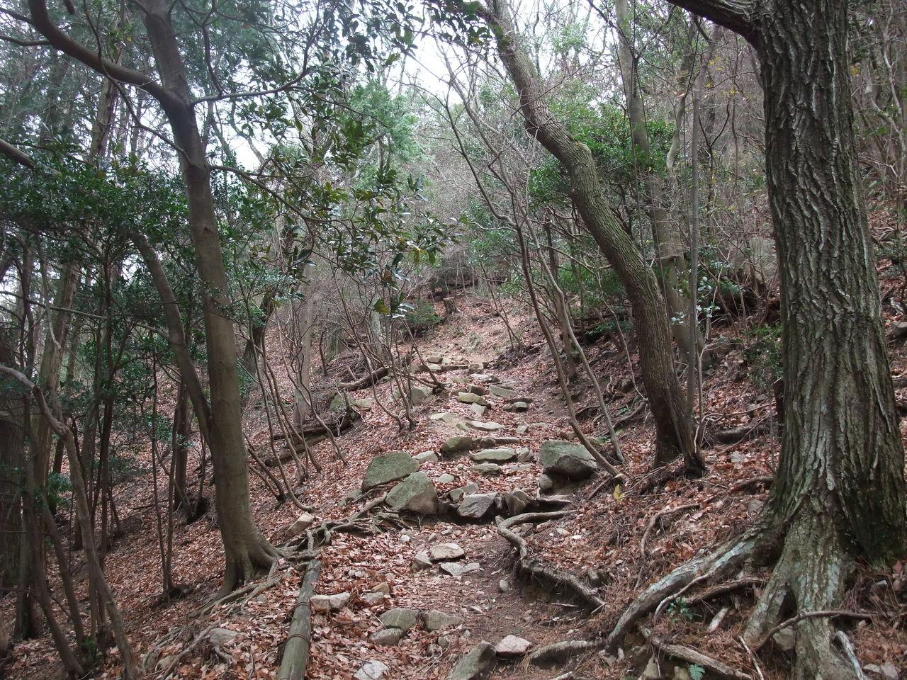 稲妻坂 摩耶山
