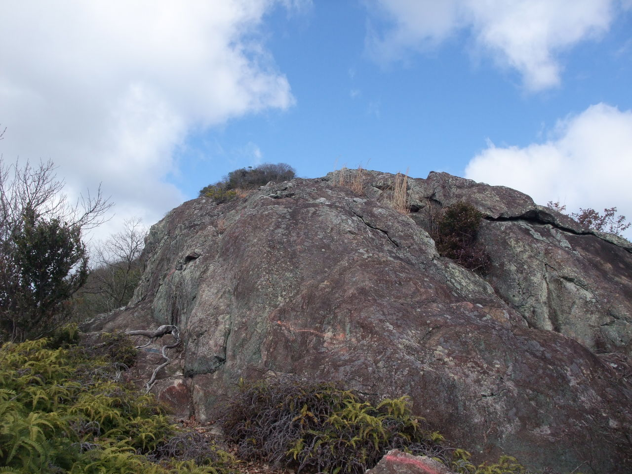 峰相山 トンガリ山 亀岩