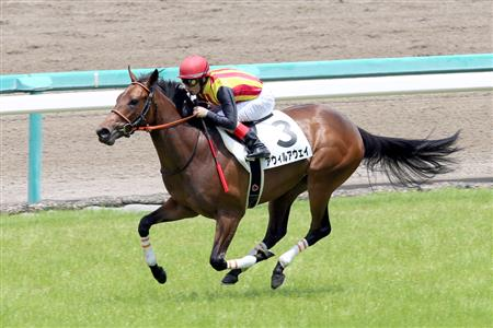 【2歳新馬】新種牡馬ジャスタウェイ、早くも3勝目