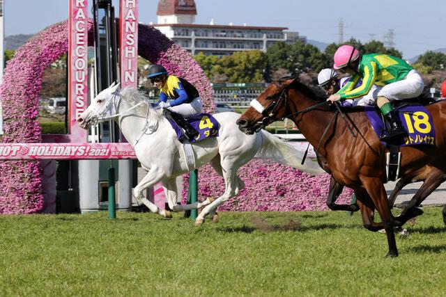うまなみ 競馬速報 [B!] 競馬関係者が選ぶ最強馬ランキングを発表