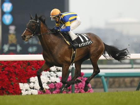 ルックトゥワイス(牡7)が引退し乗馬に 行先は未定