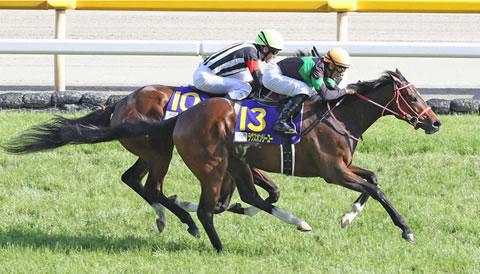 ラヴズオンリーユー有馬記念を見送り 来春はドバイが目標