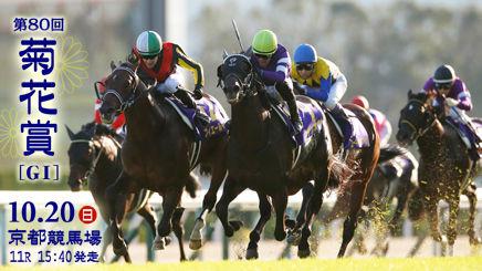 【菊花賞】競馬は血統と言う人は何買うん?