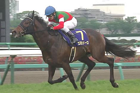 【日本ダービー】皐月賞馬「エポカドーロ」思った以上に人気がない件