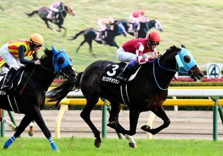 オジュウチョウサン JCパスで有馬記念に直行 和田正師「武豊騎手に引き続きオファー」