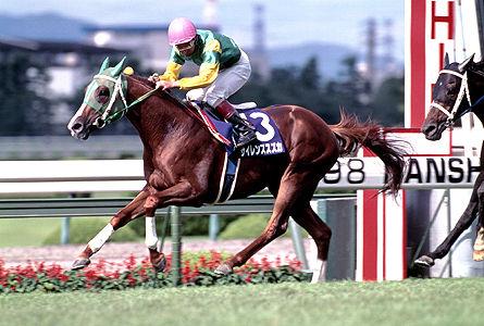 競馬 う まなみ JRA日本中央競馬会