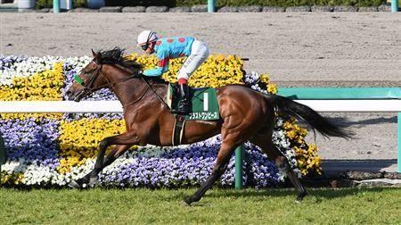 ブラストワンピースが有馬記念で勝つ確率