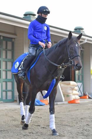 【2歳新馬】シルバーステート全弟リストが阪神5R武豊でデビュー