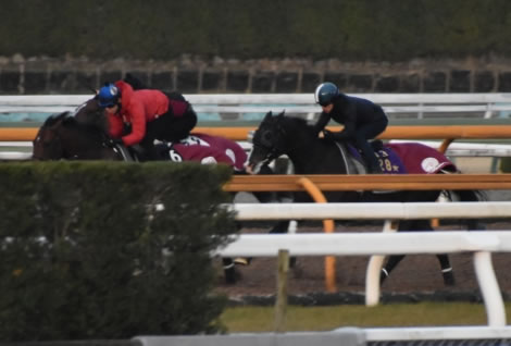 【金鯱賞】ダノンプレミアムさん2週前追い切りで猛時計!