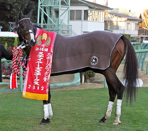 2013年の日本競馬