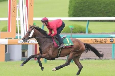 【宝塚記念】外国馬ワーザーなんで人気なの?