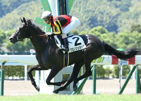 【競馬予想】[1]第80回 オークス(優駿牝馬)(G1)/2019