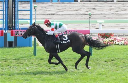 レイエンダ東京新聞杯へ サトノアレスとタワーオブロンドンも合わせて藤沢厩舎3頭出し