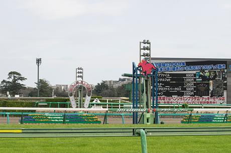 中山で好走する馬と、東京で好走する馬はどっちが強いの?