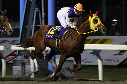 競馬 う まなみ JRA37期生第3回模擬レース~永島まなみさんが2勝目