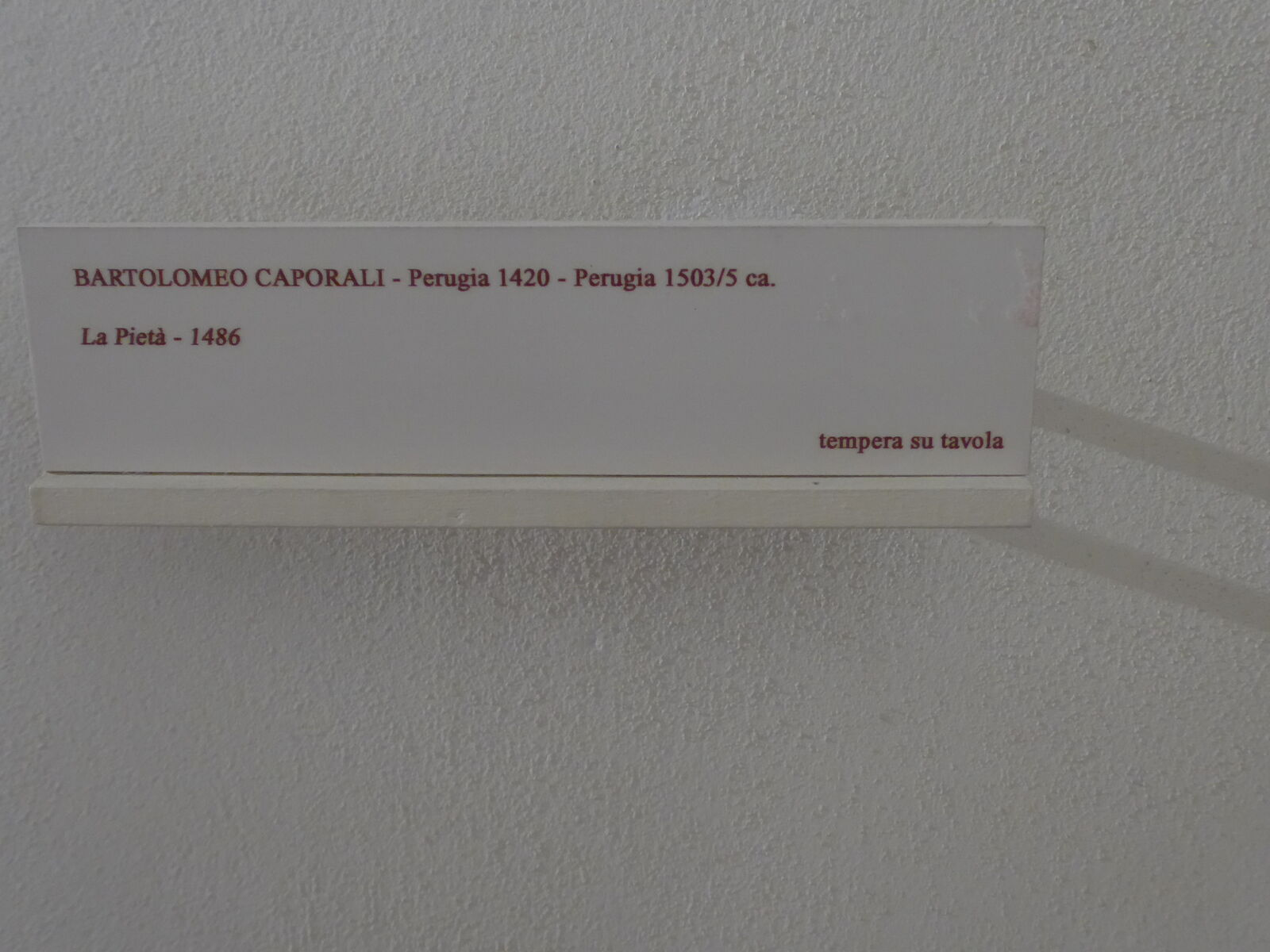 P2330165