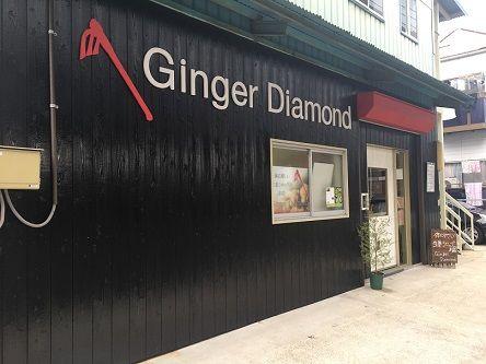 GingerDiamond2